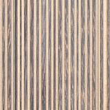 palm paneling texture - desert